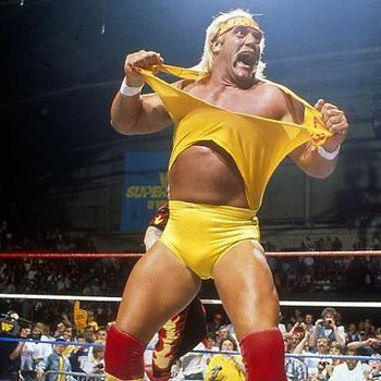 Hulk-hogan_0_0_0x0_432x432_jpeg1247841010_display_image_display_image