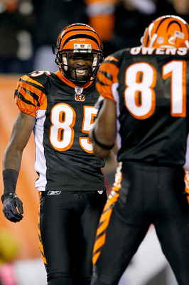 CINCINNATI - NOVEMBER 08: Chad Ochocinco #85 and Terrell Owens #81 of the Cincinnati Bengals is celebrate Owens touchdown against the Pittsburgh Steelers at Paul Brown Stadium on November 8, 2010 in Cincinnati, Ohio.  (Photo by Matthew Stockman/Getty Imag