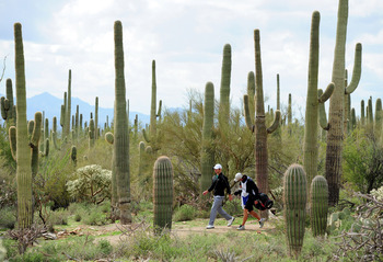 MARANA, AZ - FEBRUARY 21:  Paul Casey of England and caddie Christian Donald walk during final round of the Accenture Match Play Championship at the Ritz-Carlton Golf Club at  on February 21, 2010 in Marana, Arizona.  (Photo by Stuart Franklin/Getty Image