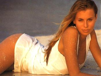 Niki_taylor_5_display_image