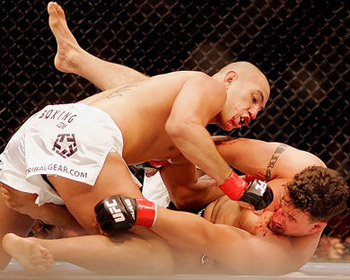Brandon-vera-vs-frank-mir_display_image