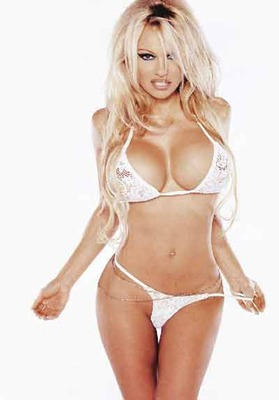 Pamela-anderson_display_image
