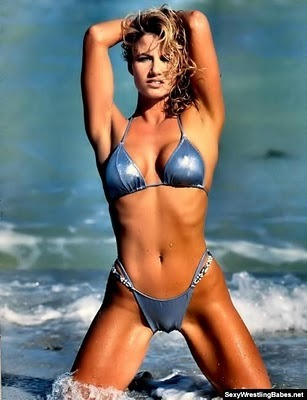 Tammy-lynn-sytch-wwe_display_image