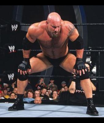 69goldberg_display_image