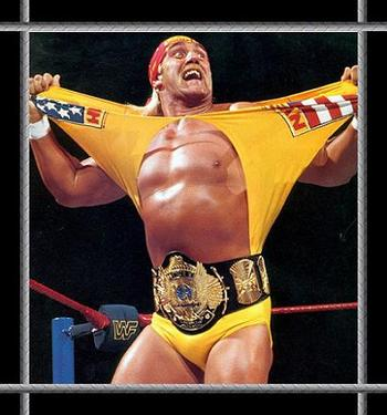 1hulkhogan_display_image