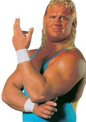 Wwf_mr_perfect_display_image