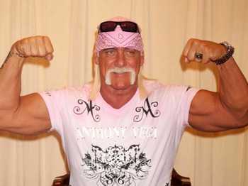 Hulk-hogan_display_image