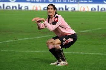 Cavani_display_image