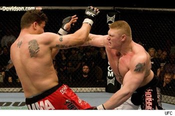 Mirlesnar_display_image