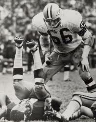 Ray_nitschke_display_image
