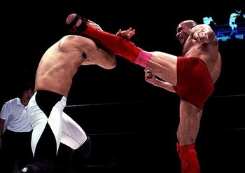 Bas_rutten_high_kick_display_image