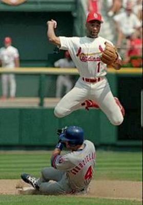 Ozzie_smith_display_image