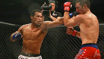Mma_sd_souza_b1_576_display_image