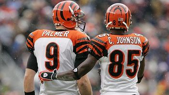 Nfl_g_palmer_ochocinco_576_display_image