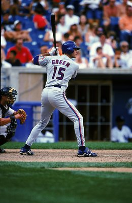 23 Jul 1999: Shawn Green #15 of the Toronto Blue Jays stands at bat during the game against the Chicago White Sox at Comisky Park in Chicago, Illinois. The Blue Jays defeated the White Sox 2-1Mandatory Credit: Jonathan Daniel  /Allsport