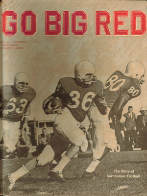 P66gobigred_display_image