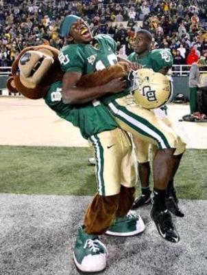 Baylorbears_display_image