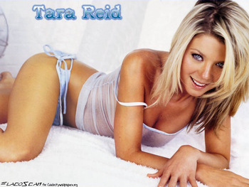 Tarareid_display_image