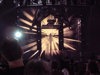 My Own Personal Picture from Wrestlemania 25