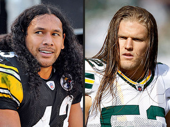 Troy-polamalu-500x375_display_image