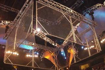 Cage1_display_image