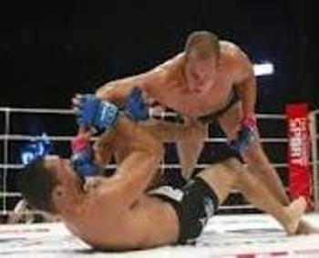 Fedor Emelianenko delivering vicious GNP on Nogueira