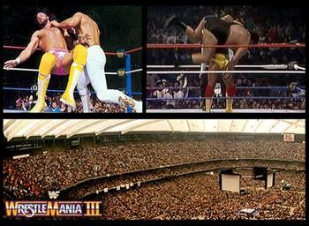 33wrestlemania3_display_image