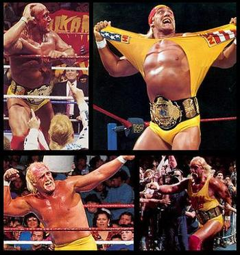 60hulkhogan_display_image
