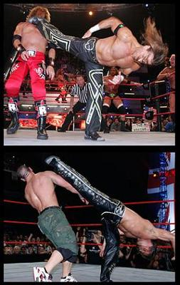 66shawnmichaels_display_image