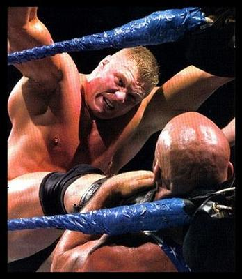 88brocklesnar_display_image