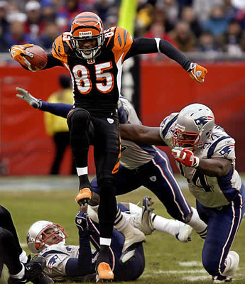 Cincinnati20bengals20betting20don20best_display_image