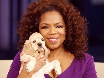 20090306-tows-oprah-dog-sadie-350x263_display_image