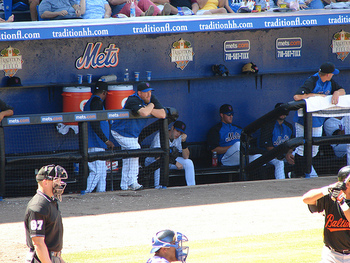 Metsbench_display_image