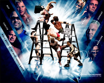 Moneyinthebank-wrestlemania24-wallp_display_image