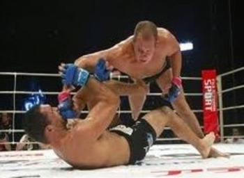 Fedor Emelianenko delivering brutal GNP on Nogueira