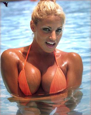 Wwe-diva-trish-stratus-f8ba8_display_image