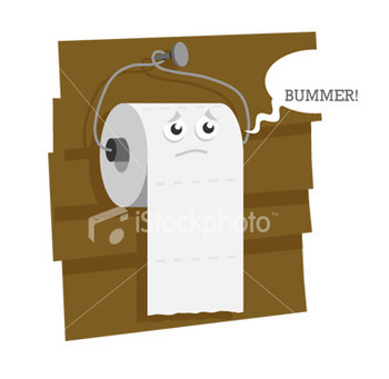 Toilet-paper_display_image