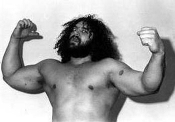 Bruiserbrody_display_image