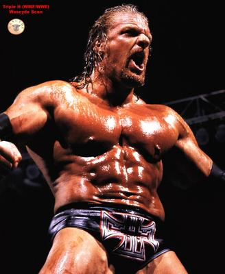 Triple-h-800x977-98kb-media-1718-media-99438-1122852859_display_image