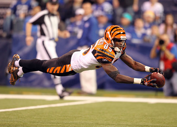 INDIANAPOLIS - NOVEMBER 14:  Chad Ochocinco #85 of the Cincinnati Bengals reaches for a pass during the Bengals 23-17 loss to the Indianapolis Colts in the NFL game at Lucas Oil Stadium on November 14, 2010 in Indianapolis, Indiana.  (Photo by Andy Lyons/