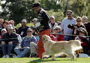 PEBBLE BEACH, CA - FEBRUARY 12:  Comedian George Lopez runs with a golden retriever to fetch his golf ball on the 16th hole during the third round of the AT&amp;T Pebble Beach National Pro-Am on February 12, 2005 at the Pebble Beach Golf Links in Pebble Beach