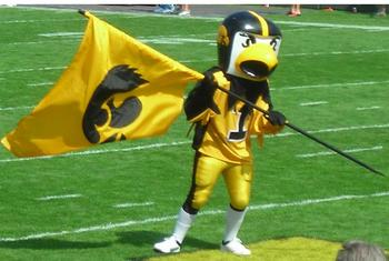 Herky_and_tigerhawk_display_image