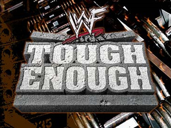 Wwe-wwf-tough-enough-i_1294095587_display_image