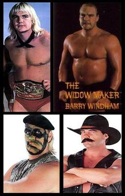 Barrywindham_display_image