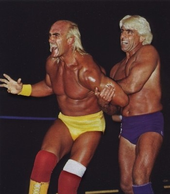 Hulk hogans hair falling out freakin awesome network forums so basically hogan has hair at the back and sides of his head he is a norwood 7 on this scale pmusecretfo Gallery