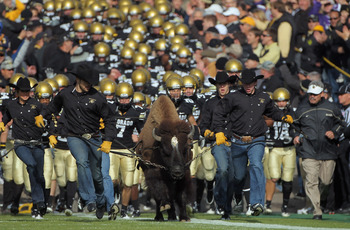 BOULDER, CO - NOVEMBER 20:  Ralphie IV, the mascot for the Colorado Buffaloes, leads coach Brian Cabral (R) and the team onto the field to face the Kansas State Wildcats at Folsom Field on November 20, 2010 in Boulder, Colorado.  (Photo by Doug Pensinger/