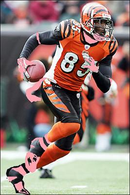 Chad-johnson-pink_display_image