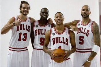 Bulls_display_image