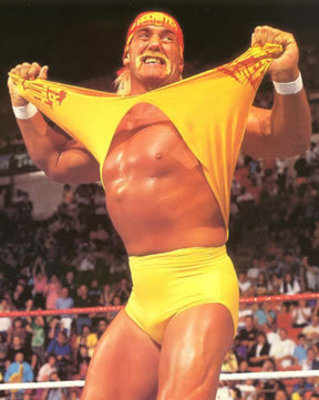Hulkster_display_image