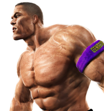 Wwe_cena_display_image